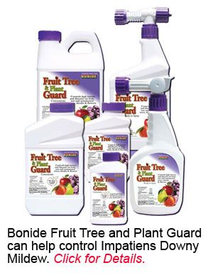 Bonide Fruit Tree and Plant Guard helps control impatiens downy mildew