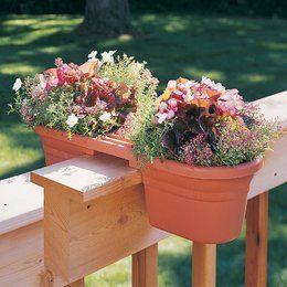 Gardening In Pots Gardening pots gertens gardening pots workwithnaturefo