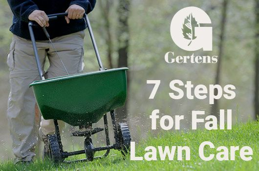 7 Steps for Fall Lawn Care
